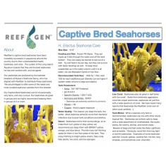 ReefGen Laminated Seahorse Info Sign